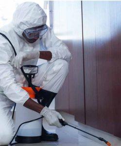Pest-Control-Services-fourways